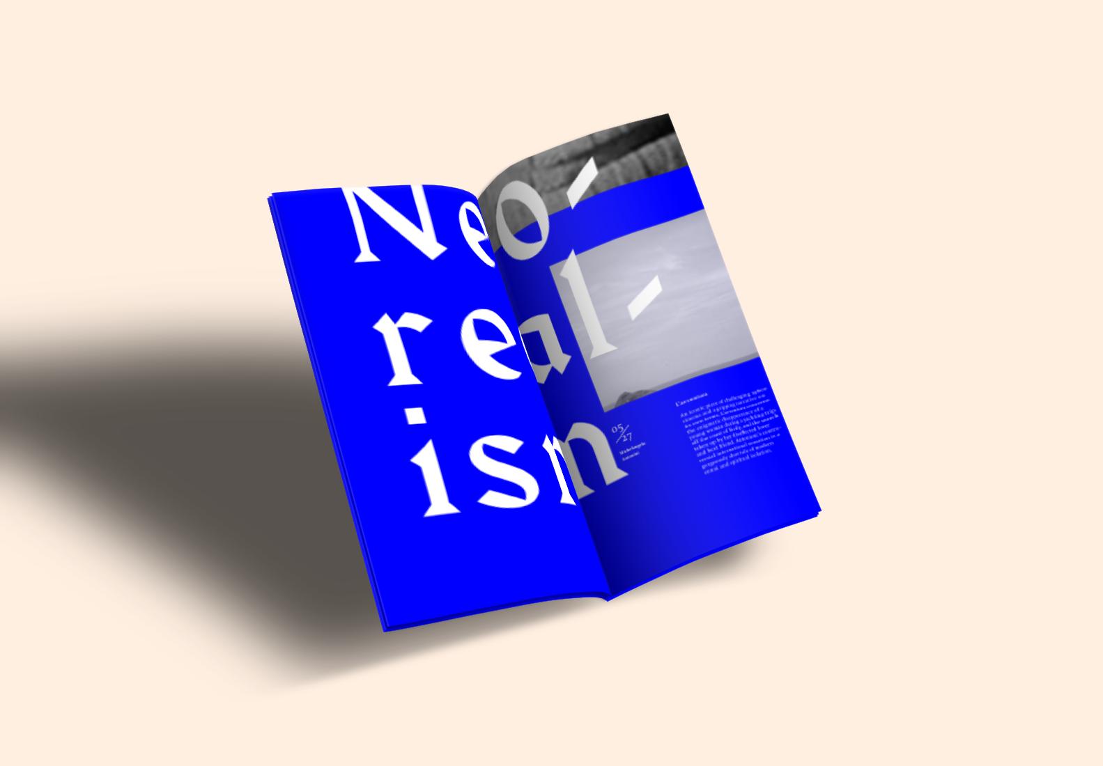 Neoreal_book